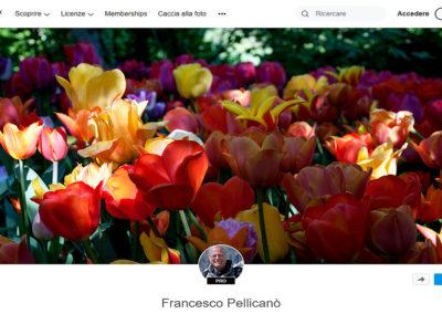 FRANCESCO PELLICANÒ